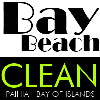 Bay Beach Clean